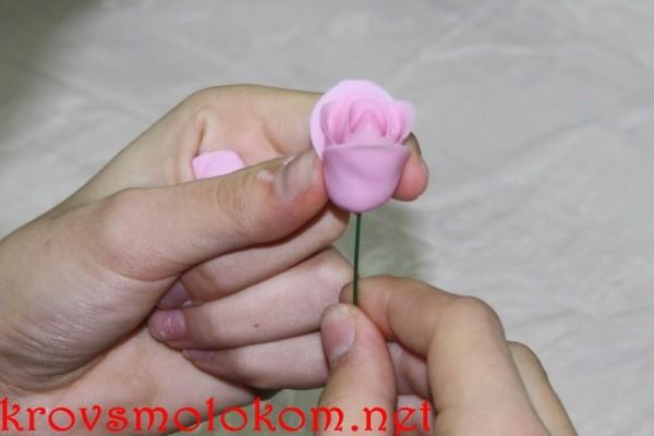 изготовление цветов с помощью «Холодного фарфора»